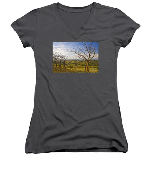 Lush Land Leafless Trees 2 Women's V-Neck (Athletic Fit)