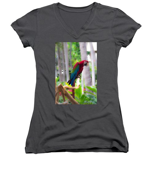 Women's V-Neck T-Shirt (Junior Cut) featuring the photograph Macaw by Angela DeFrias
