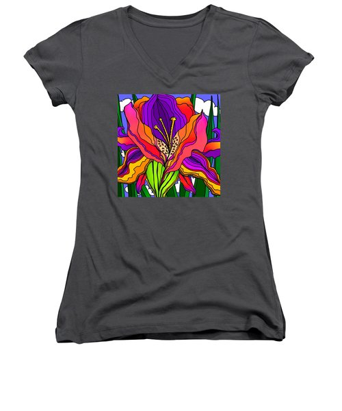 Magical Mystery Garden Women's V-Neck T-Shirt