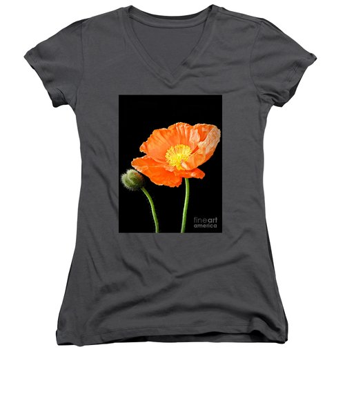 Magnificent Simplicity  Women's V-Neck (Athletic Fit)