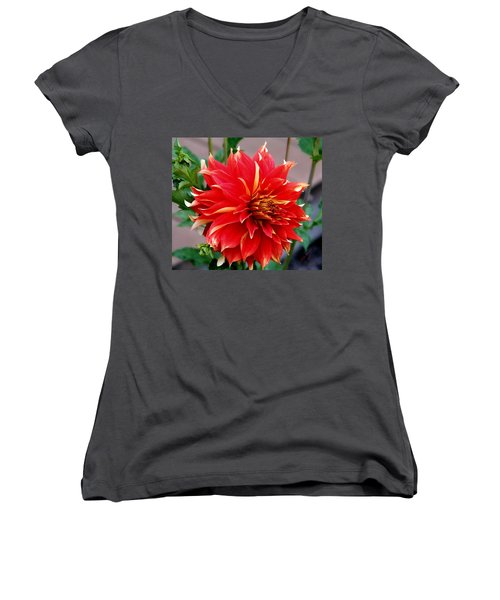 Magnifique Women's V-Neck T-Shirt (Junior Cut) by Jeanette C Landstrom