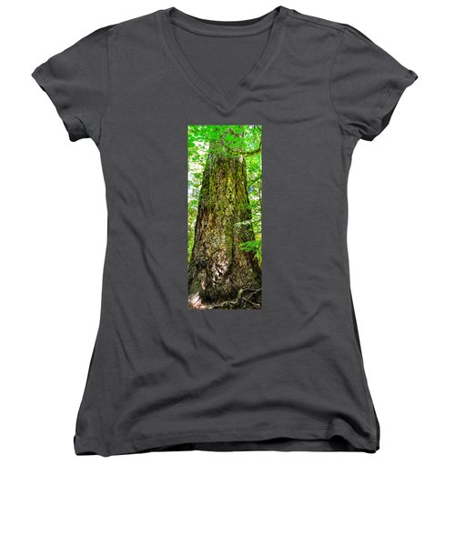 Women's V-Neck featuring the photograph Majestic Spirit Collection 2 by Roxy Hurtubise