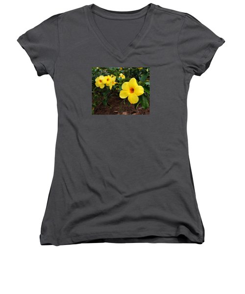 Mandevilla Women's V-Neck T-Shirt (Junior Cut) by Judy Vincent