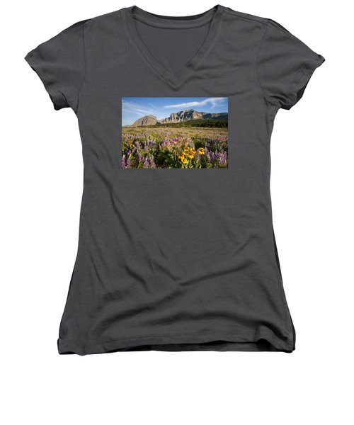 Women's V-Neck T-Shirt (Junior Cut) featuring the photograph Many Glacier Spring by Jack Bell