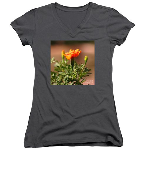 Women's V-Neck T-Shirt (Junior Cut) featuring the photograph Mary Reaches For The Sun by Joseph J Stevens