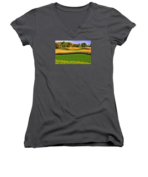 Maryland Country Roads - Swales Women's V-Neck (Athletic Fit)
