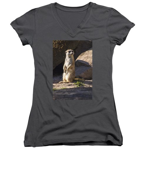 Meerkat Looking Left Women's V-Neck T-Shirt (Junior Cut) by Chris Flees