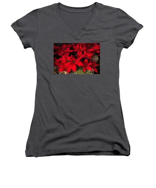 Merry Scarlet Poinsettias Christmas Star Women's V-Neck