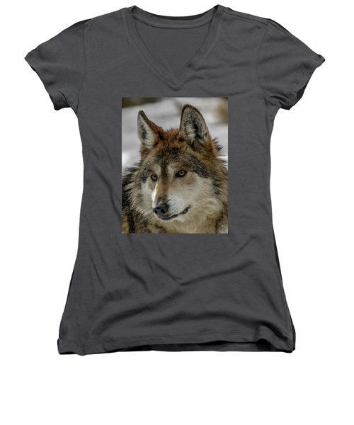 Mexican Grey Wolf Upclose Women's V-Neck T-Shirt