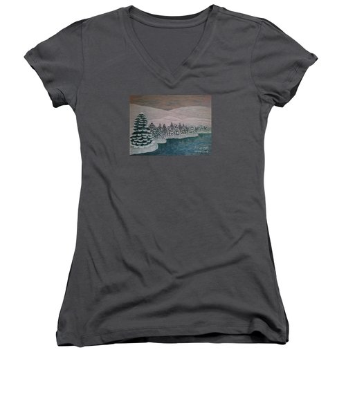Michigan Winter Women's V-Neck T-Shirt (Junior Cut) by Jasna Gopic