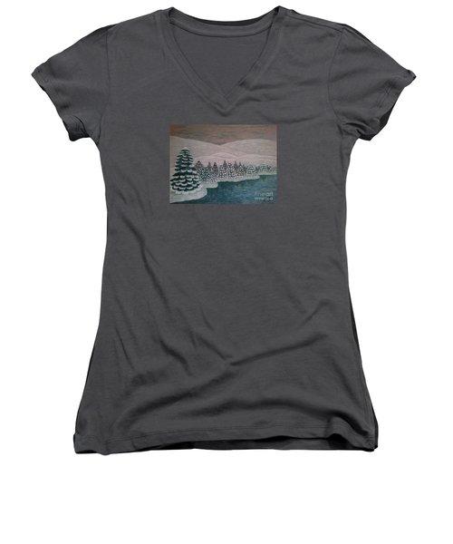 Michigan Winter Women's V-Neck T-Shirt