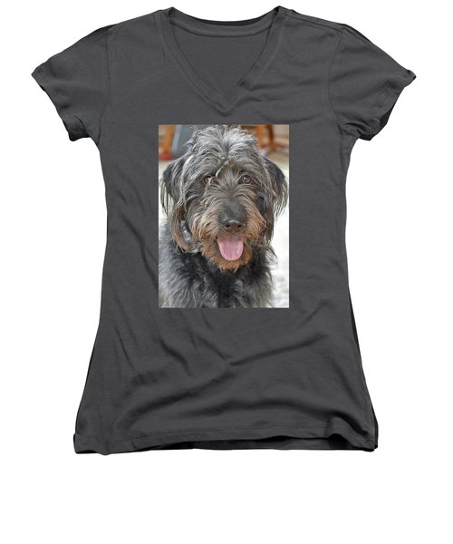 Women's V-Neck T-Shirt (Junior Cut) featuring the photograph Milo by Lisa Phillips