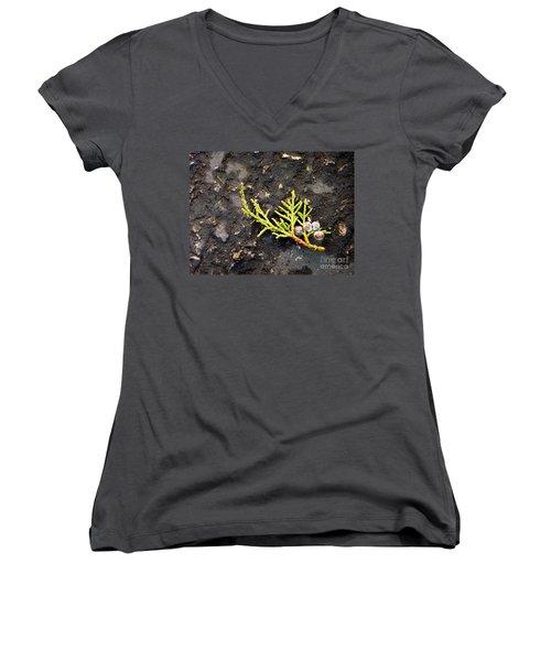 Women's V-Neck T-Shirt (Junior Cut) featuring the photograph Missing Christmas by Meghan at FireBonnet Art