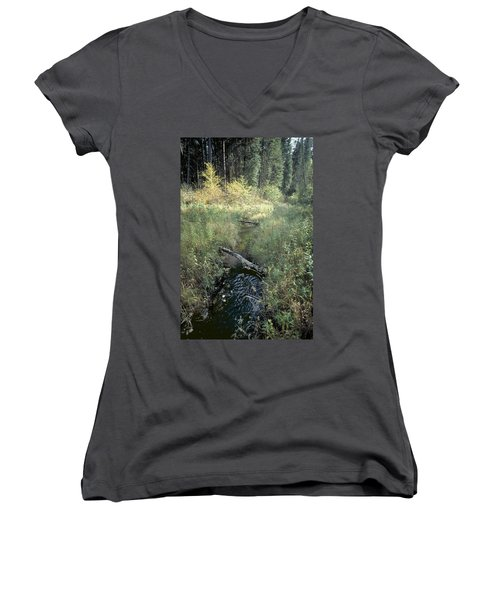 Mississippi River Headwaters Women's V-Neck (Athletic Fit)