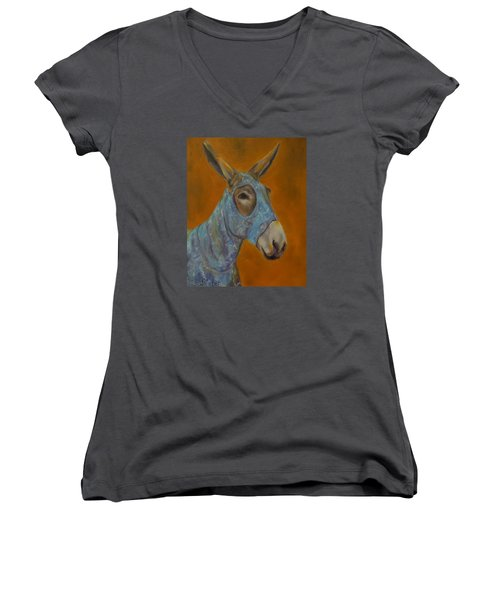 Mo Vision,donkey Women's V-Neck T-Shirt