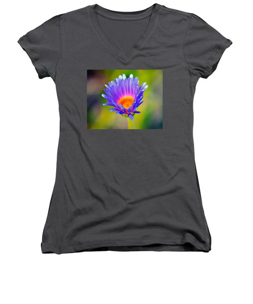 Mojave Aster Women's V-Neck T-Shirt (Junior Cut) by Joe Schofield