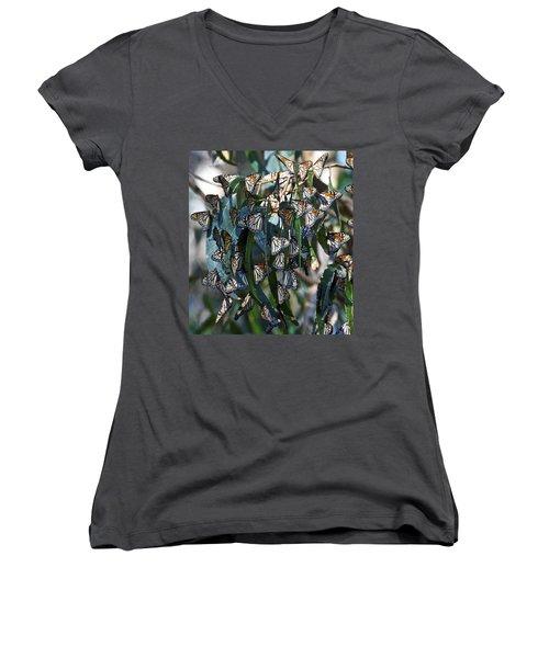 Monarch Butterflies Natural Bridges Women's V-Neck T-Shirt (Junior Cut)