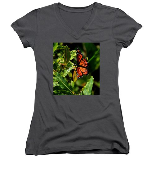 Viceroy Butterfly II Women's V-Neck (Athletic Fit)