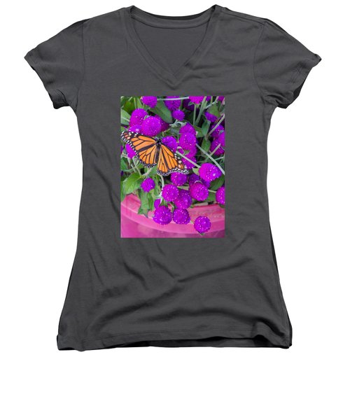 Monarch On Bachelor Buttons Women's V-Neck T-Shirt
