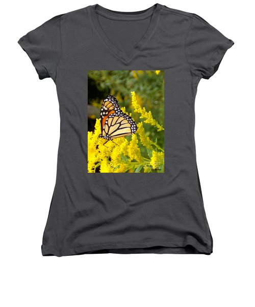 Women's V-Neck T-Shirt (Junior Cut) featuring the photograph Monarch by Sara  Raber