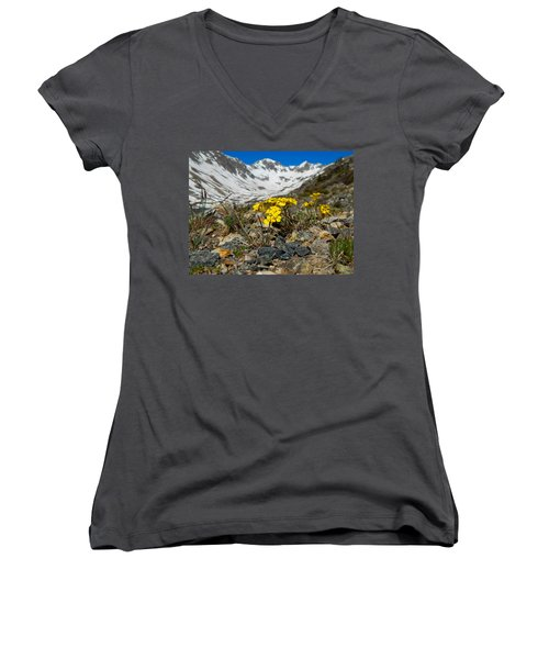 Blue Lakes Colorado Wildflowers Women's V-Neck T-Shirt (Junior Cut) by Dan Miller
