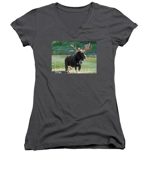 Moose Country Women's V-Neck T-Shirt (Junior Cut) by Bob Hislop