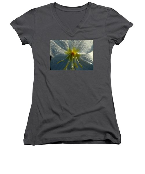 Morning Dew Women's V-Neck T-Shirt (Junior Cut) by Steven Reed