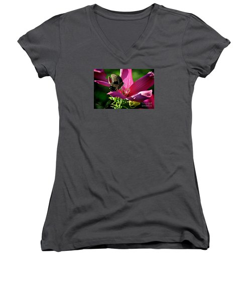 Women's V-Neck T-Shirt (Junior Cut) featuring the photograph In The Morning by Nava Thompson