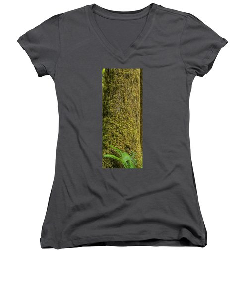 Moss Covered Tree Olympic National Park Women's V-Neck T-Shirt
