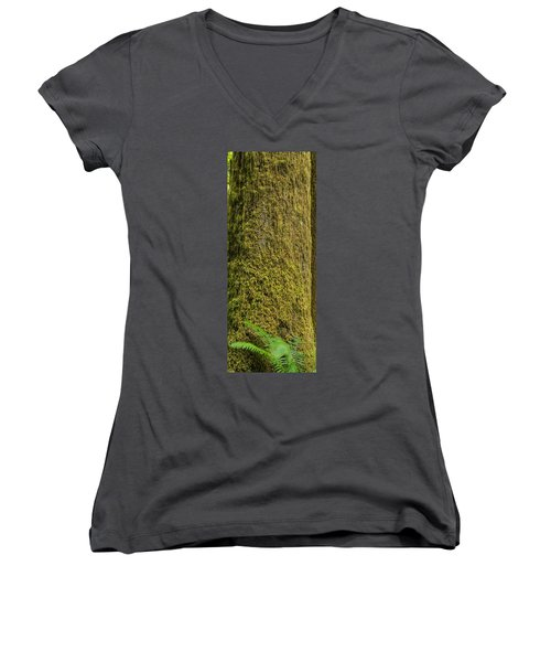 Moss Covered Tree Olympic National Park Women's V-Neck (Athletic Fit)
