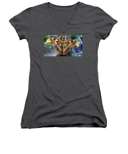 Atlas Moth Women's V-Neck