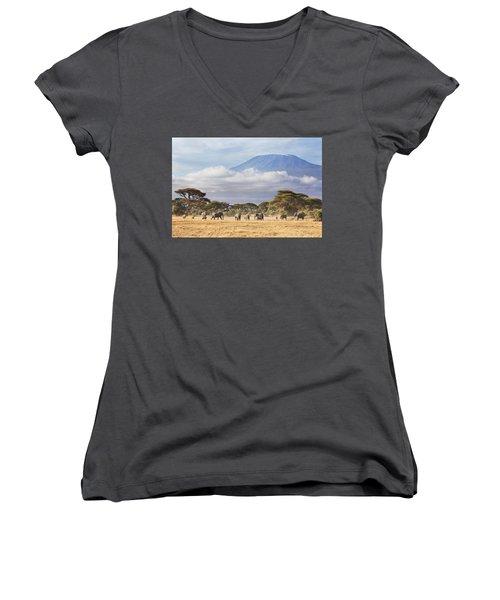 Mount Kilimanjaro Amboseli  Women's V-Neck