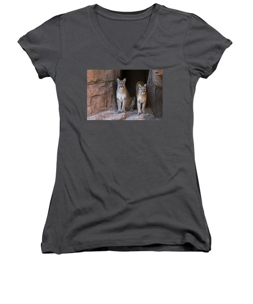 Women's V-Neck T-Shirt (Junior Cut) featuring the photograph Mountain Lion 2 by Arterra Picture Library