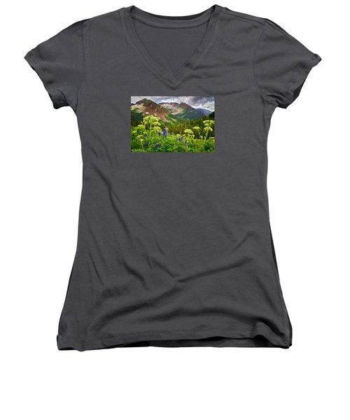 Mountain Majesty Women's V-Neck T-Shirt (Junior Cut) by Priscilla Burgers