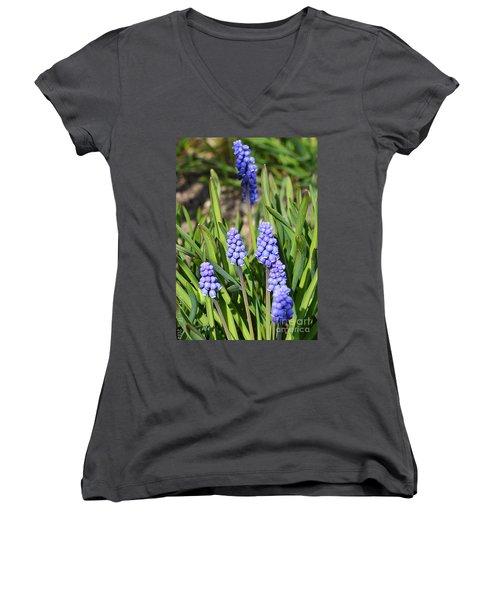 Muscari Armeniacum Women's V-Neck T-Shirt (Junior Cut) by Felicia Tica
