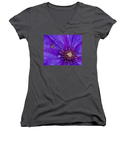 My Old Clematis Home Women's V-Neck (Athletic Fit)