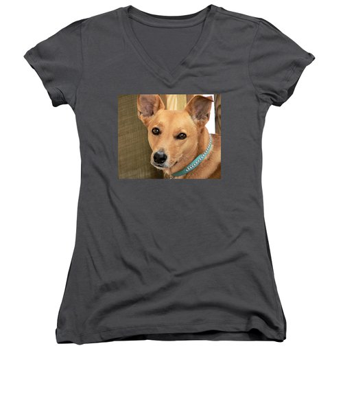 Dog - Cookie One Women's V-Neck