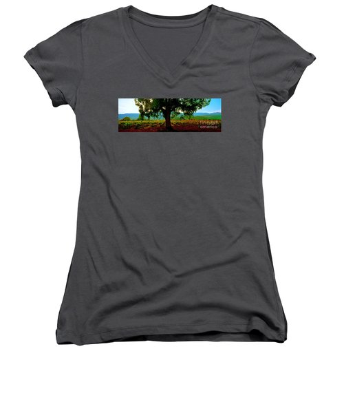 Napa Valley Ingenook Winery Roadside Women's V-Neck (Athletic Fit)