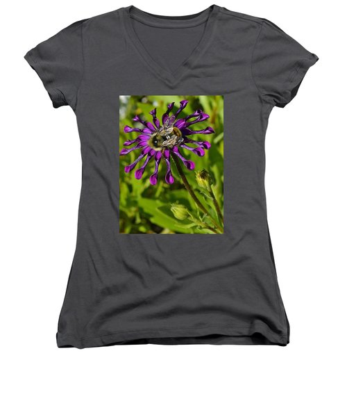 Nature At Work Women's V-Neck (Athletic Fit)