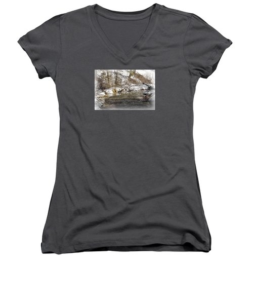 Women's V-Neck T-Shirt (Junior Cut) featuring the photograph Nature's Direction by Janie Johnson
