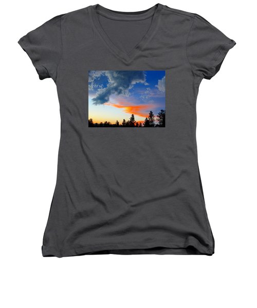 Women's V-Neck T-Shirt (Junior Cut) featuring the photograph Nature's Palette by Barbara Chichester
