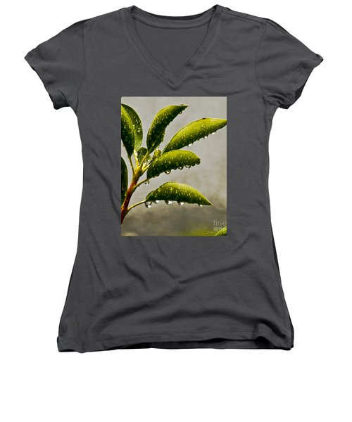 Natures Teardrops Women's V-Neck T-Shirt (Junior Cut) by Carol F Austin