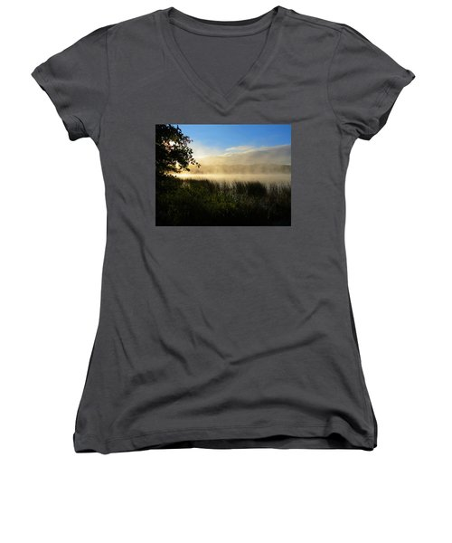 Nature's Way Women's V-Neck T-Shirt (Junior Cut) by Dianne Cowen