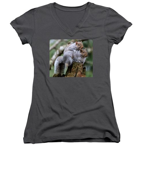 Fifty Shades Of Gray Squirrel Women's V-Neck T-Shirt (Junior Cut) by Kym Backland