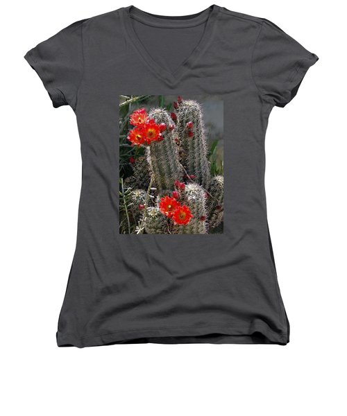 New Mexico Cactus Women's V-Neck