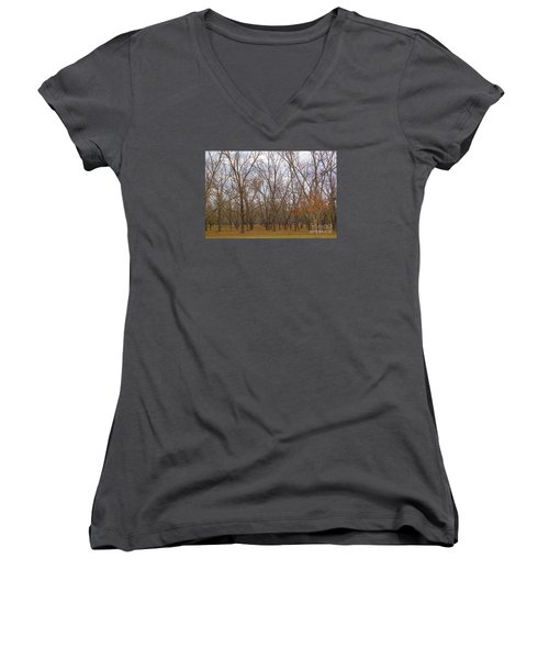 North Florida Orchard In Fall Women's V-Neck