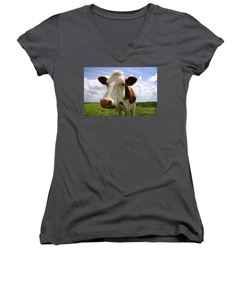 Nosy Cow Women's V-Neck (Athletic Fit)