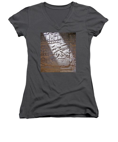Offerings  Women's V-Neck T-Shirt (Junior Cut) by Leena Pekkalainen