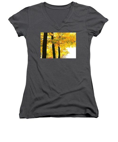 Ohio Autumn Women's V-Neck T-Shirt