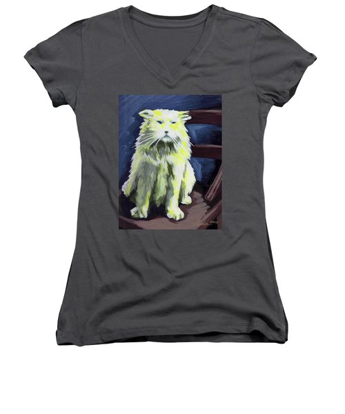 Old World Cat Women's V-Neck T-Shirt (Junior Cut)